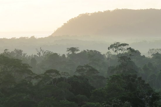 Cockatoo Hill Retreat Resmi