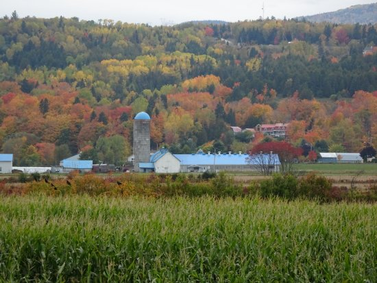 Baie-St-Paul Picture
