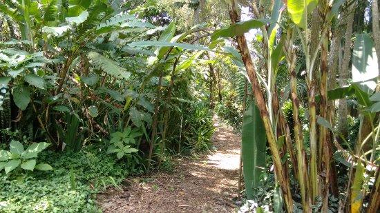 The Ark Herb Farm: Bonito camino por los jardines, cascadas, vistas, plantas, olores, tranquilidad.