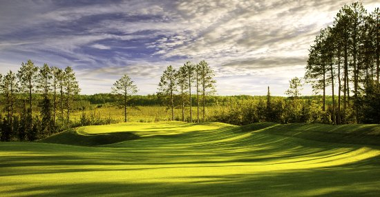 Tower, MN: The Eagle #16