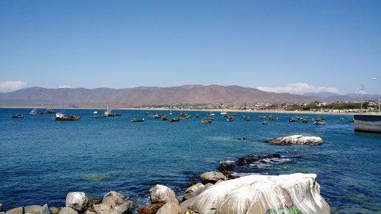 Coquimbo, شيلي: Playa de Guanaqueros mirada desde la caleta de pescadores