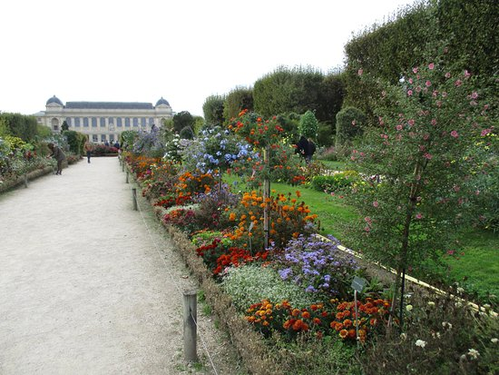 Jardin des plantes paris france top tips before you go for Paris jardin plantes