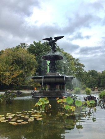 Central Park: photo3.jpg