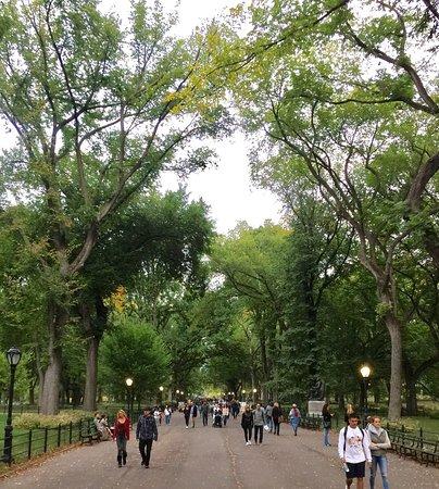 Central Park: photo4.jpg