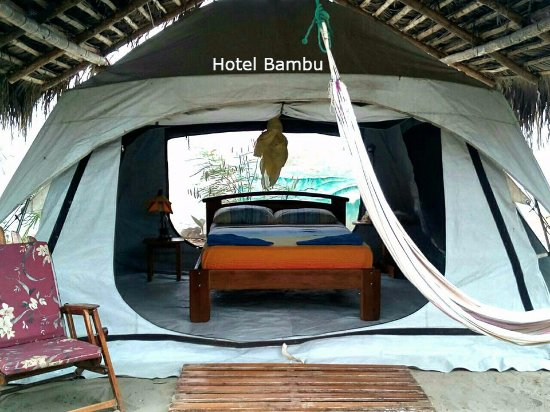 Hotel Bambu cool tents with electricity and wifi & cool tents with electricity and wifi - Picture of Hotel Bambu ...