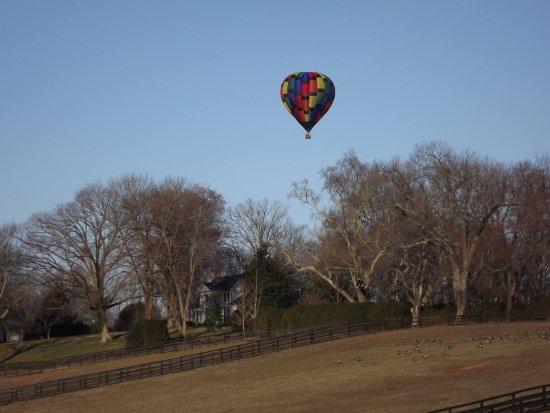 Charlottesville, VA: Flying over the Albemarle countryside.