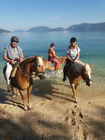 Bavarian Horse Riding Stables: Idyllic! x