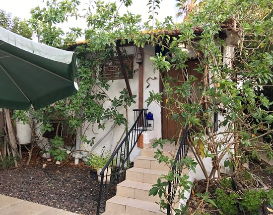 Mazkeret Batya, Israel: Rm. 2 entrance. Shrubs encroach on narrow stairway to front door.