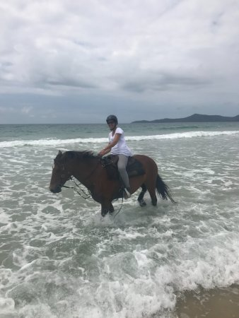 Noosa, Australia: Riding through the surf after a canter along the beach