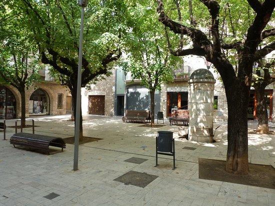Museu Arqueológic Comarcal