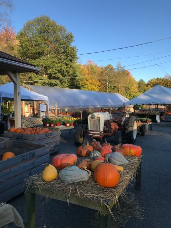 Davidian Bros. Farm: It's fall