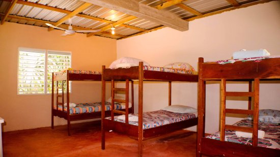Dorm Room Bunk Beds Can Hold 10 People Picture Of Nuuk Cheil