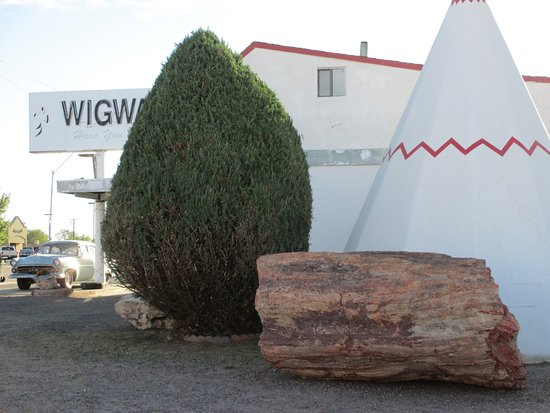 Wigwam Motel: Petrified wood in the parking lot