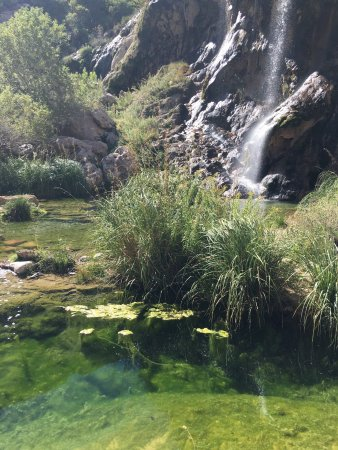 Sitting Bull Falls: photo2.jpg
