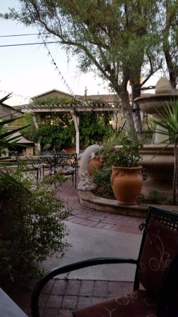 Olive Tree Inn: Great garden dining... but no wine, no food, no service...