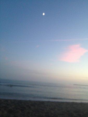 Doheny State Beach: photo1.jpg