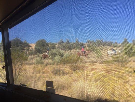 Cottonwood, AZ: photo7.jpg