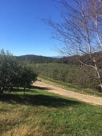 Sky Top Orchard: photo0.jpg