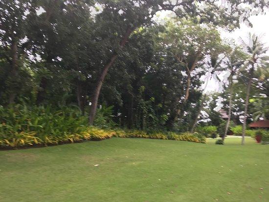 Shangri-La's Mactan Resort & Spa: photo3.jpg