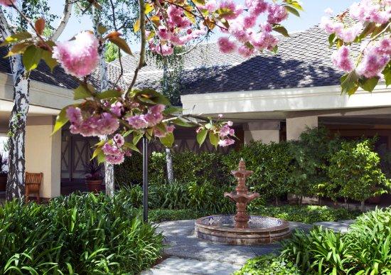 Sunnyvale, Kalifornien: Garden