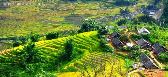 Sapa Local Tours