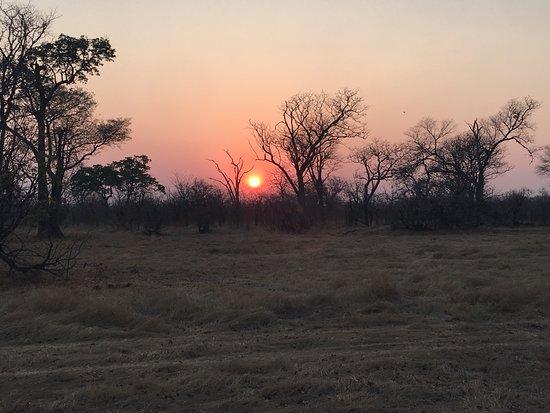 Hwange National Park, Zimbabwe: Sunrise view from the tent