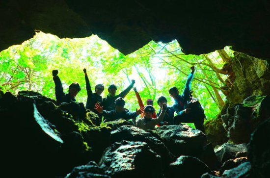 Explore Mt. Fuji Ice Cave in Aokigahara Forest