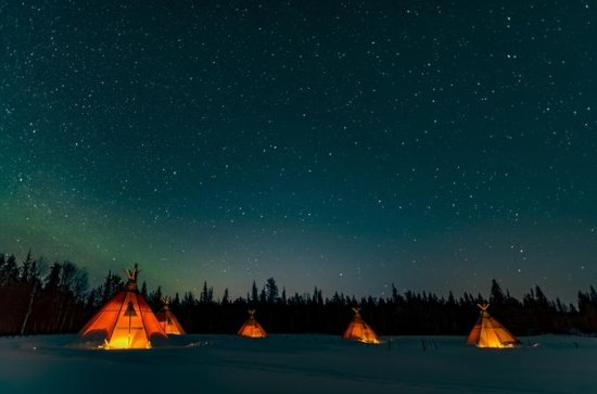 Northern Lights and wildlife in...