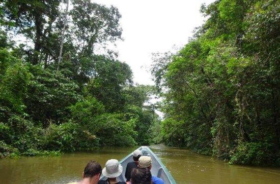 Cuyabeno 4日間のジャングルツアー