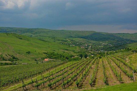 Tour à vélo et à vin en Roumanie