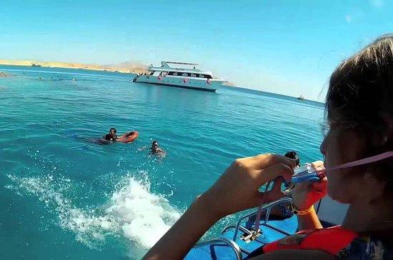 Gita in barca di un giorno per fare