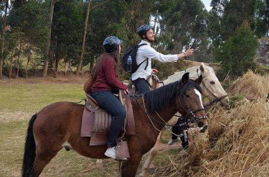 Montar caballos peruanos de paso en...