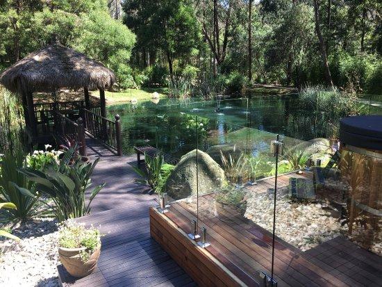 Montrose, Australia: photo0.jpg