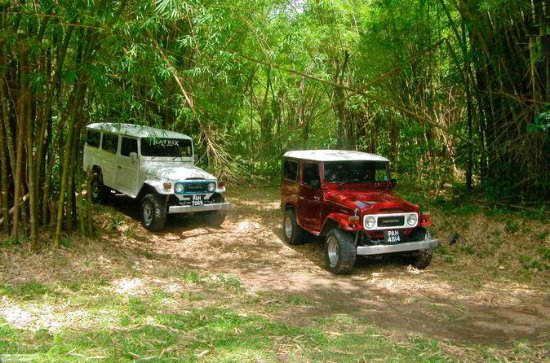 Trinidad Jeep Adventure