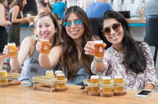 Austin Live Music and  Brewery Tour