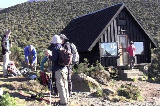 Randonnée d'un jour au Kilimandjaro...