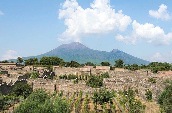Pompeii Vesuvius Winery Lunch...