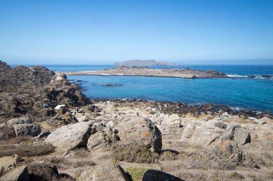Punta Choros: Vista de las islas