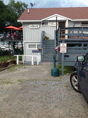 Osprey, Georgetown Maine