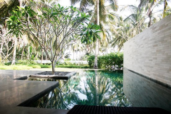 Pekutatan, Indonesia: Ocean Pool Villa - Private Pool