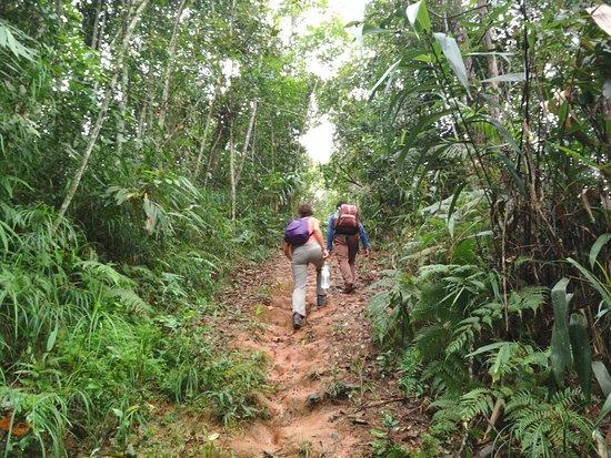 Luang Namtha, Laos: Trekking
