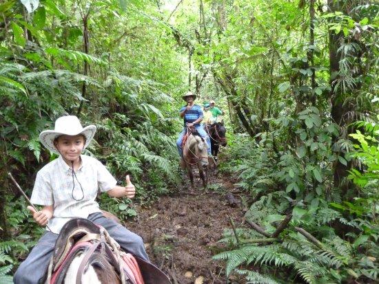 Tres Equis, Costa Rica: Horseback riding tour