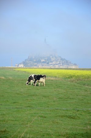 Mont-Saint-Michel, Prancis: Don't need to say much - Just go. Photo location easy walk from Road.