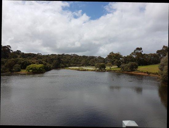 Wilyabrup, Australia: 20171018_125910_large.jpg