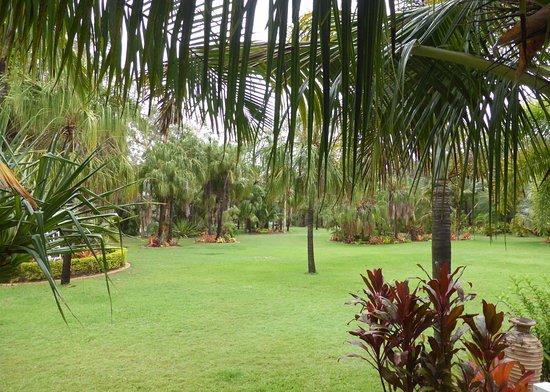 Agnes Water, Australia: Garden view from restaurant
