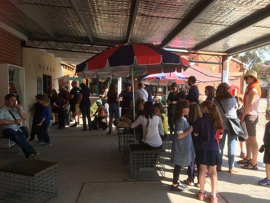 Castlemaine, Australia: End of term ice creams at Icecream Social is always a winner