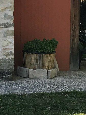 Valfabbrica, Italy: Locanda Acquasanta
