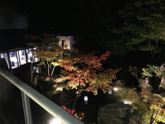 Owani-machi, Ιαπωνία: 部屋からの夜景