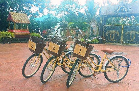 กิจกรรมขี่จักรยานฟรี - free bicycle ride activities
