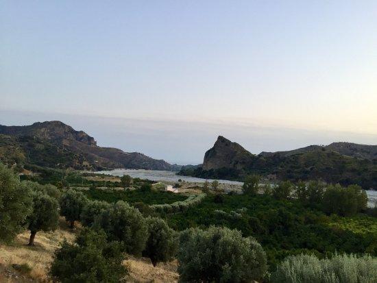 Condofuri, Italia: panorama dall'area comune e coltivazione bergamotto